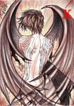 Kamui Shirou - X by erikwillian