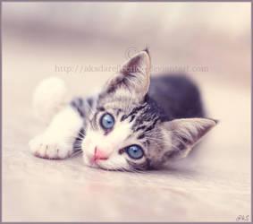 innocence in my eyes by ahmedwkhan
