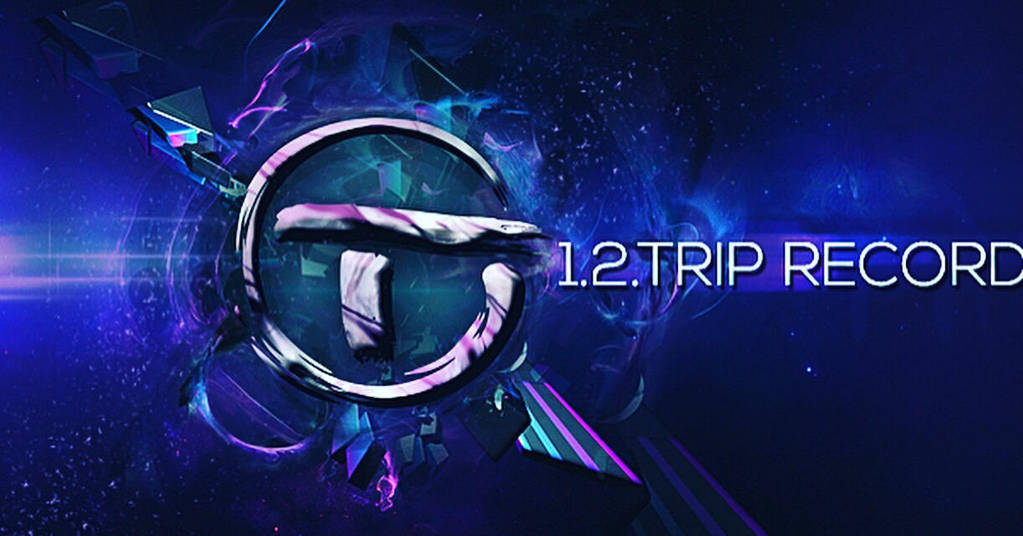 1.2.Trip Records by dambi12