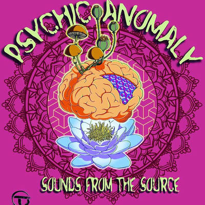 Psychic Anomaly - Sounds from The Source  by dambi12