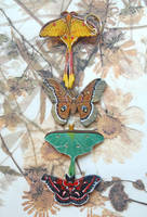 Leather Moths 6-2011 by Angelic-Artisan
