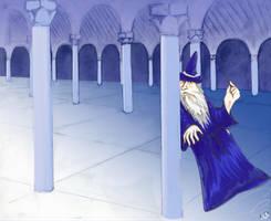 Wizard by sengarden