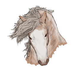 Sabino Gypsy Vanner by VIPCalamityKitty