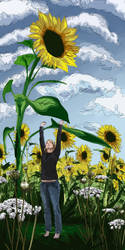 hey look its a sunflower by Wastings