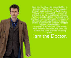 I Am The Doctor -A Poem- by remijones