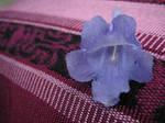 Purple flower by DeathRabb3