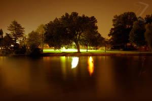 The Tree Across the Pond 2 by ZeeZedZee