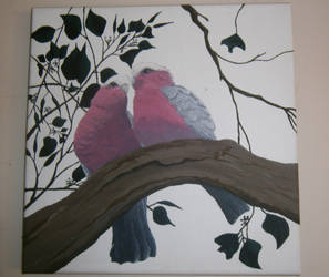 Galah Love by Dnigel