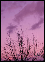 Sunset by PerfidaDelfine
