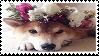 shiba inu stamp by sinnamonstamps