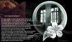 Loves Memories Of Desire by LaColombeDeDeuil