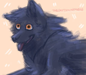 Comfy Derpy Woof by TheCatDownstairs