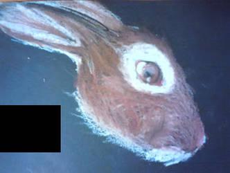 Oil Pastels Rabbit by LunaAngel-Eclipse