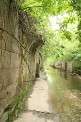 Urban Ruins 008 by wyldangel-stock
