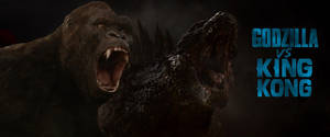 Godzilla VS King kong by Asthonx1