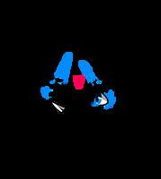 MLP Base - Scarf love - Read Desc by prvde