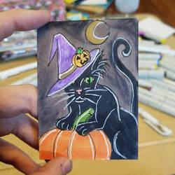 Black Cat by ravens-hearth