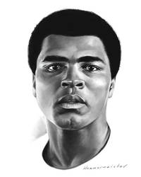 Muhammad Ali by markdraws