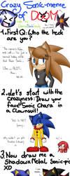 EternalSonicFreak's Crazy Sonic Meme by EternalSonicFreak