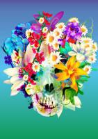 Skull Nu8 by bboypion