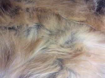 Fur stock by Nefermeritaset