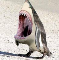 Sealfeed bites back. by Xiaphear