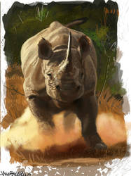 rhino by NilesRockwell
