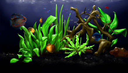 My aqua by sagatti