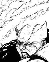 She-Wolverine by ThomasBlakeArtist