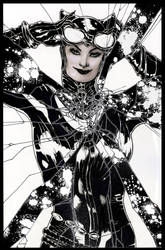 Shattered Reflection Catwoman - Greytones by ThomasBlakeArtist