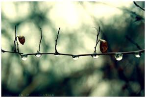 +Drop, Two, Three+ by Dra-Matha