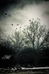 Sanity in emptiness by KarelSopek