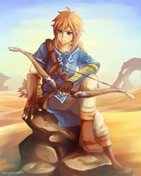 WiiU Link by marymarhta