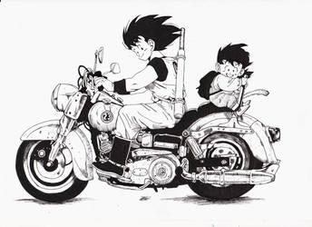 Dragon Ball Study/Fanart by Roshaimulder