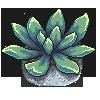 Succulent Pixel by Knask