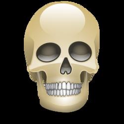 Crystal Skull by k-net