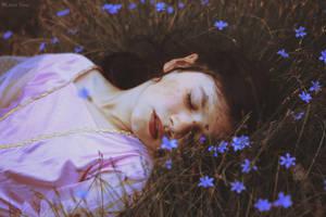 La valse sous les paupieres. by Leona-Snow