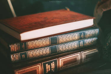 Books by Leona-Snow