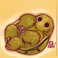 Tortoise by StressedJenny