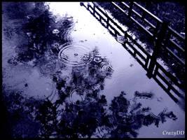 Rain by CrazyDD