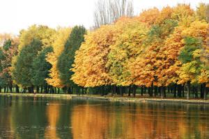 autumn by CrazyDD