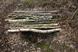 Hole covered by Birch logs by Kitsch-Craft