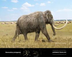 Woolly Mammoth by Rom-u