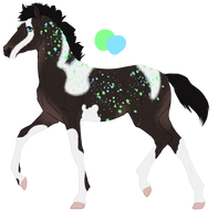 N6024 Padro Foal Design by MistMasquerade