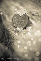 Shiny Love by cRomoZone