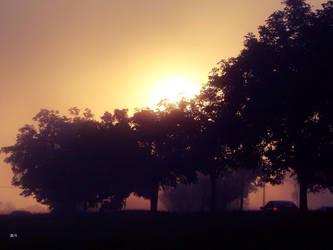 Sunrise by seek-and-hide