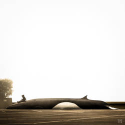 lonely whale [print] by inflight