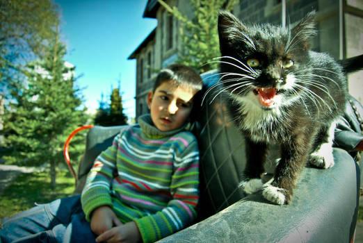 ultimate cat power by zgizemk