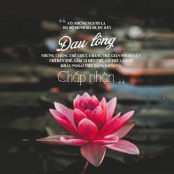 lotus flower. by monbebe2075