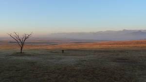 early morning drakensburg by grabakiwi